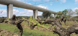 Le lobby viticole a réussi à modifier le tracé de la ligne nouvelle... Le viaduc de Vernègues au-dessus des vignes. © Christophe RECOURA/LVDR